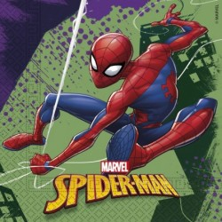 Spiderman Team Up:...